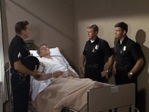 Adam-12: Season 3 Episode 12