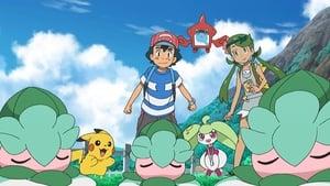 Pokémon Season 20 :Episode 35  Currying Favor and Flavor!