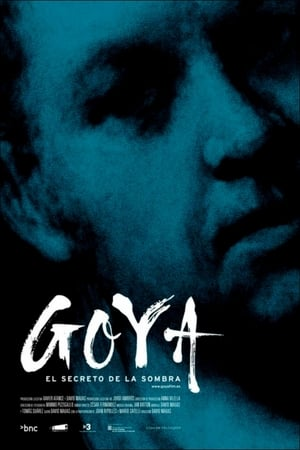 Image Goya: The Secret of the Shadows