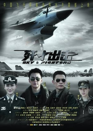 Sky Fighters (2011)