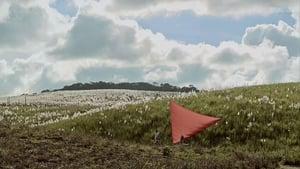 Portuguese movie from 2017: Açúcar