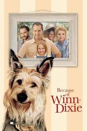 Winn Dixie 2005 Full Movie Subtitle Indonesia