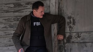 FBI: Most Wanted: 1×11