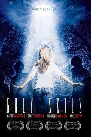 Grey Skies (2010)