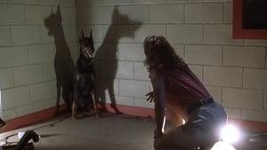 Shadowbuilder (La sombra del mal) (1998) Shadow Builder