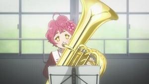 Twinkle Twinkle, Little Tuba