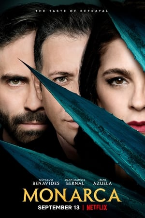 Baixar Monarca (2019) Dublado via Torrent
