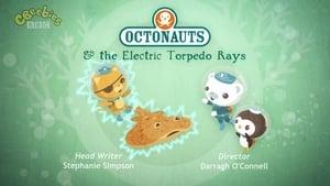 The Octonauts: 1×46