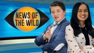 News Of The Wild