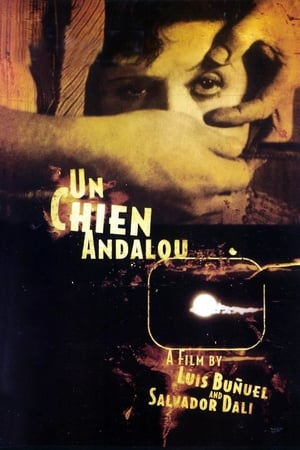 Un Chien Andalou streaming