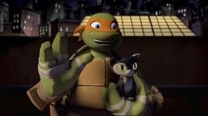 Teenage Mutant Ninja Turtles: 1×4