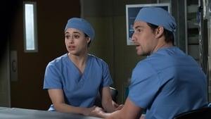 Chirurdzy: s14e19 online