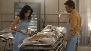 Dexter Sezon 2 Odcinek 4 online S02E04