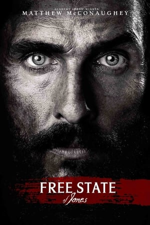 Filmposter Free State of Jones