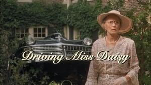 Wożąc panią Daisy online