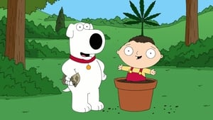 Family Guy Season 7 : 420