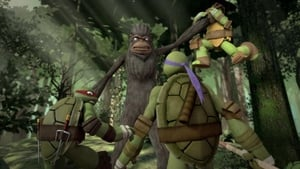 Teenage Mutant Ninja Turtles Season 3 Episode 2