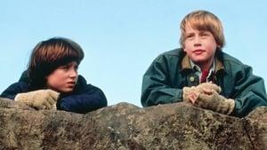 The Good Son 1993
