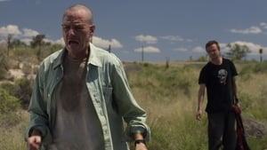 Breaking Bad Season 2 :Episode 3  Bit by a Dead Bee