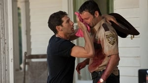 Episodio HD Online The Walking Dead Temporada 2 E2 Baño de sangre