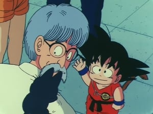 Dragon Ball: 2×16