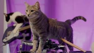 Cat People Season 1 Episode 2