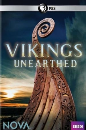 Image NOVA: Vikings Unearthed