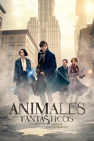 Animales fantásticos y dónde encontrarlos (2016)