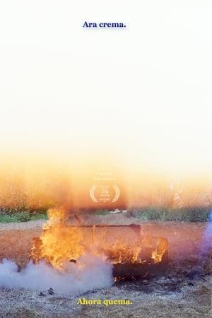 Ara Crema /// Ahora Quema (2020)
