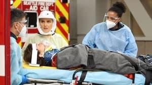 Grey's Anatomy Season 17 :Episode 11  Sorry Doesn't Always Make It Right