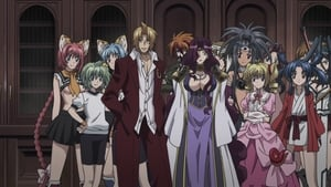 High School DxD Episódio 8 Online