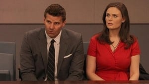 Bones Season 7 : The Past in the Present