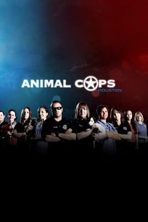 Image Animal Cops: Houston
