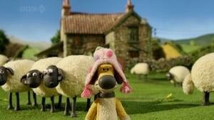 Shaun the Sheep Season 2 Episode 13