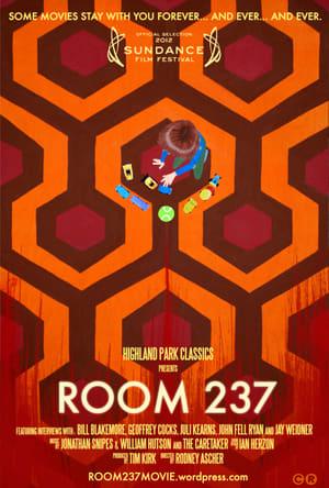 Image Room 237