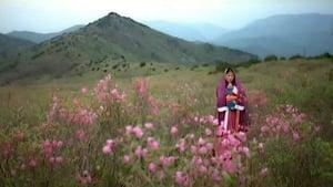 Korean movie from 2000: My Heart