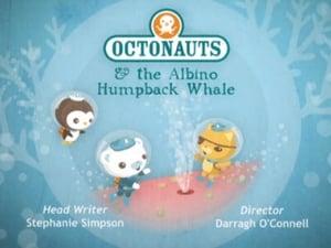 The Octonauts Season 1 Episode 14