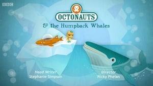 The Octonauts Season 3 Episode 5