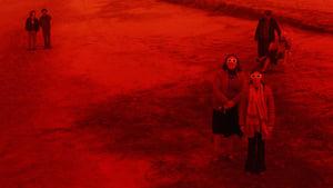 Rojo (2018) HD 1080p Español Latino