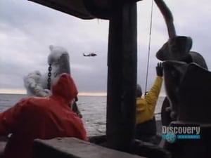 Pesca radical - Temporada 2