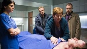 Scene of the Crime Season 41 : Episode 4