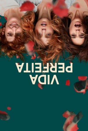 Vida Perfeita 1ª Temporada Torrent, Download, movie, filme, poster