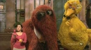 Big Bird and Snuffy Talent Show