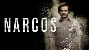 Narcos S01 Complete BluRay 720p [Hindi + English] x264 MSubs
