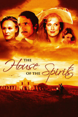 The House of the Spirits-Meryl Streep