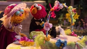 Sesame Street Season 44 :Episode 24  The Wedding Planner