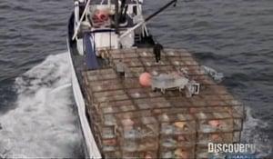 Pesca radical - Temporada 3
