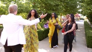 The Real Housewives of Atlanta Season 10 :Episode 6  All Aboard the Shady Express