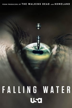 Falling Water Saison 1 WEBRIP FRENCH Complète