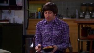 The Big Bang Theory 5×20